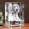Trójwymiarowe zdjęcie psa wygrawerowane w szkle