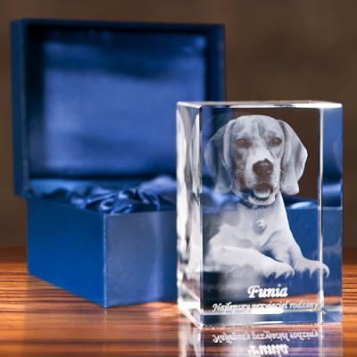 Pies 3D wygrawerowany w szklanej statuetce