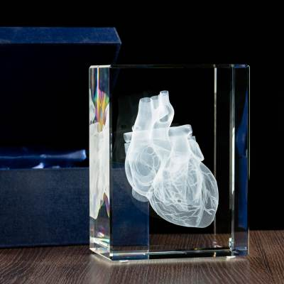 -MEGASTATUETKA- Grawerowany model serca 3D w statuetce dla lekarza