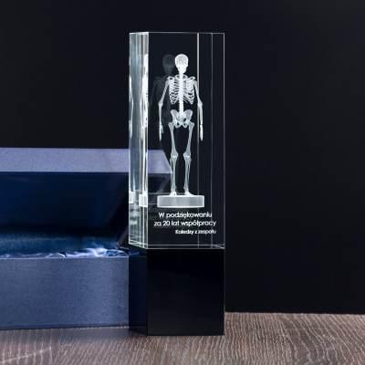 Trójwymiarowy szkielet, statuetka dla pracownika za 20 lat współpracy