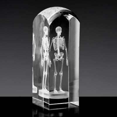 Podziękowania dla lekarza - szkielet 3D