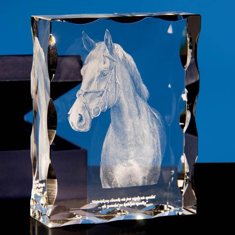 Trójwymiarowe zdjęcie konia wtopione w statuetkę